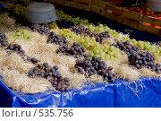 Купить «Рынок в Ницце», фото № 535756, снято 20 сентября 2008 г. (c) Asja Sirova / Фотобанк Лори