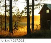Осень в лесу, дом. Стоковое фото, фотограф Anna Marklund / Фотобанк Лори