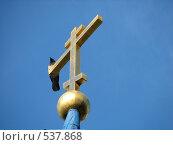 Купить «Ворона на православном кресте», фото № 537868, снято 15 мая 2007 г. (c) Yevgeniy Zateychuk / Фотобанк Лори