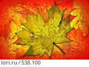 Купить «Осень», фото № 538100, снято 9 июля 2020 г. (c) Владимир Сергеев / Фотобанк Лори