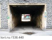 Купить «Свет в конце тоннеля», фото № 538440, снято 6 сентября 2008 г. (c) Троицкая Алиса / Фотобанк Лори