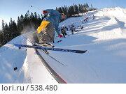 Купить «Лыжник. Фристайл.», фото № 538480, снято 29 марта 2008 г. (c) Сергей Юрченко / Фотобанк Лори