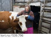 Купить «Бабушка и ее кормилица - Зорька», эксклюзивное фото № 539796, снято 1 ноября 2008 г. (c) Ирина Солошенко / Фотобанк Лори