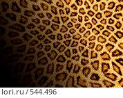 Купить «Фон леопард», иллюстрация № 544496 (c) ElenArt / Фотобанк Лори