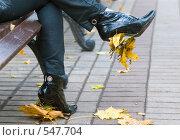 Купить «Осенний этюд», фото № 547704, снято 11 октября 2008 г. (c) Сергей Лаврентьев / Фотобанк Лори