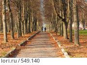 Купить «Осенняя аллея», фото № 549140, снято 4 ноября 2008 г. (c) Игорь Качан / Фотобанк Лори