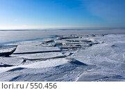 Купить «Лед у берега и замерзший Финский залив в феврале», фото № 550456, снято 16 февраля 2008 г. (c) Max Toporsky / Фотобанк Лори