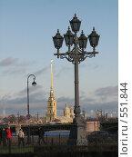 Фонари Санкт-Петербурга на фоне Петропавловской крепости (2008 год). Стоковое фото, фотограф Виктор / Фотобанк Лори