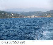 Купить «Черноморское побережье в Кудепсте близ Сочи», фото № 553920, снято 13 августа 2006 г. (c) Ирина Борсученко / Фотобанк Лори