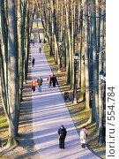 Купить «Москва. Царицыно.», фото № 554784, снято 8 ноября 2008 г. (c) Сергей Лаврентьев / Фотобанк Лори