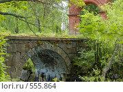 Купить «Мост и ворота», фото № 555864, снято 21 июля 2007 г. (c) Сергей Разживин / Фотобанк Лори