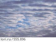 Купить «Небо», фото № 555896, снято 25 октября 2008 г. (c) Цветков Виталий / Фотобанк Лори