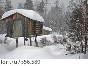 Снегопад. Стоковое фото, фотограф Иван Алферов / Фотобанк Лори