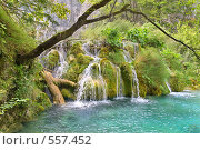 Купить «Водопад, Плитвицкие озера, Хорватия», фото № 557452, снято 7 сентября 2008 г. (c) Fro / Фотобанк Лори