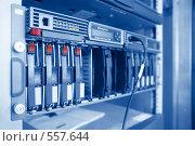 Купить «Хранилище информации в центре обработки данных», фото № 557644, снято 23 ноября 2007 г. (c) Сергей Байков / Фотобанк Лори