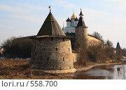 Купить «Псков.Вид на кремль.», фото № 558700, снято 5 апреля 2008 г. (c) АЛЕКСАНДР МИХЕИЧЕВ / Фотобанк Лори