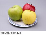 Купить «Разноцветные яблоки», фото № 560424, снято 10 ноября 2008 г. (c) Игорь Веснинов / Фотобанк Лори