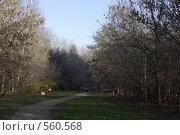 Купить «Парк осенью», фото № 560568, снято 12 ноября 2008 г. (c) Максим Кузнецов / Фотобанк Лори