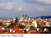 Купить «Прага», фото № 563528, снято 22 октября 2008 г. (c) Ткачёва Ольга / Фотобанк Лори