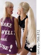 Купить «Две блондинки», фото № 566812, снято 21 октября 2008 г. (c) Михаил Мандрыгин / Фотобанк Лори