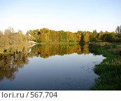 Купить «Река Ижора», фото № 567704, снято 23 сентября 2008 г. (c) Алексей Алексеев / Фотобанк Лори