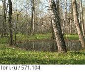 Маленькое озерце. Стоковое фото, фотограф Карина Латыпова / Фотобанк Лори