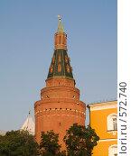 Купить «Кремлевская башня», фото № 572740, снято 21 августа 2007 г. (c) Туркин Вадим / Фотобанк Лори