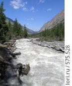 Купить «Алтай. Река Маашей», фото № 575528, снято 21 февраля 2008 г. (c) Игорь Потапов / Фотобанк Лори