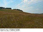 Купить «Лесостепь», фото № 584508, снято 13 августа 2008 г. (c) Виктор Уткин / Фотобанк Лори