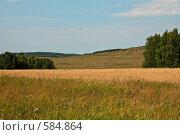 Купить «Лесостепь», фото № 584864, снято 13 августа 2008 г. (c) Виктор Уткин / Фотобанк Лори