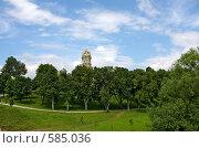 Купить «Дубровицы», эксклюзивное фото № 585036, снято 30 июня 2008 г. (c) Яна Королёва / Фотобанк Лори