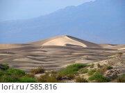 Купить «Песчаные дюны Долины Смерти. Калифорния.США», фото № 585816, снято 18 августа 2018 г. (c) Estet / Фотобанк Лори