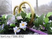 Купить «Свадебные кольца на машине молодых», фото № 586892, снято 21 ноября 2008 г. (c) Илья Телегин / Фотобанк Лори