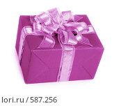Купить «Подарок», фото № 587256, снято 22 ноября 2008 г. (c) hunta / Фотобанк Лори