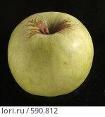 Купить «Зеленое яблоко», фото № 590812, снято 29 ноября 2008 г. (c) Vadim Tatarnitsev / Фотобанк Лори