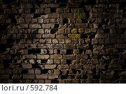 Купить «Старая кирпичная стена», фото № 592784, снято 12 ноября 2008 г. (c) Максим Солдатов / Фотобанк Лори