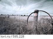 Купить «Сельский пейзаж», фото № 595228, снято 22 ноября 2019 г. (c) Игорь Киселёв / Фотобанк Лори