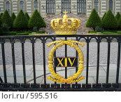 Королевский замок Стокгольма (2007 год). Стоковое фото, фотограф анюта романова / Фотобанк Лори