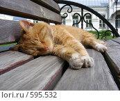 Купить «Рыжий кот спит на скамейке в монастыре», эксклюзивное фото № 595532, снято 1 июня 2008 г. (c) lana1501 / Фотобанк Лори