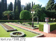 Купить «Парк около Бахайского храма в Хайфе», фото № 598272, снято 28 ноября 2008 г. (c) Zlataya / Фотобанк Лори