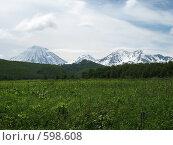 Камчатка, природный парк Налычево, трио вулканов. Стоковое фото, фотограф Легкобыт Николай / Фотобанк Лори