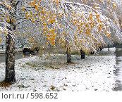 Купить «Первый снег», фото № 598652, снято 7 октября 2004 г. (c) Варенов Александр Владимирович / Фотобанк Лори