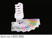 Купить «Энергосберегающая лампочка», фото № 603900, снято 29 ноября 2008 г. (c) Игорь Веснинов / Фотобанк Лори