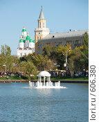 Купить «Лебединое озеро», фото № 606380, снято 5 октября 2008 г. (c) Кирилл Федорин / Фотобанк Лори