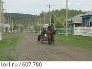 Купить «Гужевой транспорт», фото № 607780, снято 24 мая 2008 г. (c) Талдыкин Юрий / Фотобанк Лори