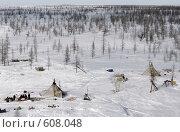 Купить «Стойбище оленеводов», фото № 608048, снято 13 апреля 2007 г. (c) Александр Николаев / Фотобанк Лори