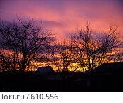 Закат. Стоковое фото, фотограф Нина Галкина / Фотобанк Лори