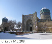 Купить «Узбекистан, Самарканд», фото № 613208, снято 8 января 2008 г. (c) Легкобыт Николай / Фотобанк Лори