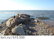 Камни на берегу. Финский залив. Стоковое фото, фотограф A Большаков / Фотобанк Лори