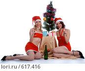 Купить «Встреча Нового Года», фото № 617416, снято 2 декабря 2008 г. (c) Serg Zastavkin / Фотобанк Лори